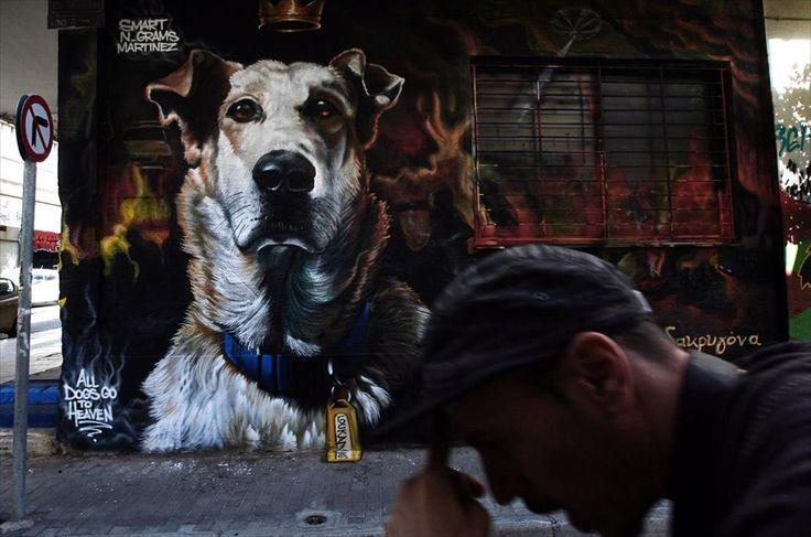 Meet Loukanikos, Athens' Protest Dog http://imgur.com/a/S2lih