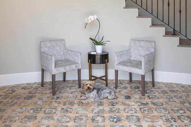 Hello Friday Entryway Palos Verdes Series Artillo Tile Shape Arabesque 2c Color Winslet Blend Designer Jen Luxury Homes Interior Palo Verde Home Decor