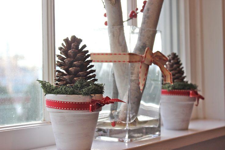 Simple pine cone pots