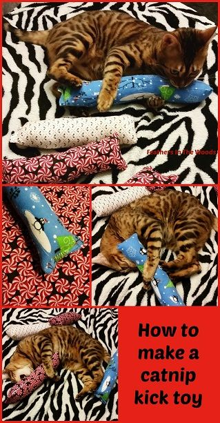 How to make a catnip kick toy for cats