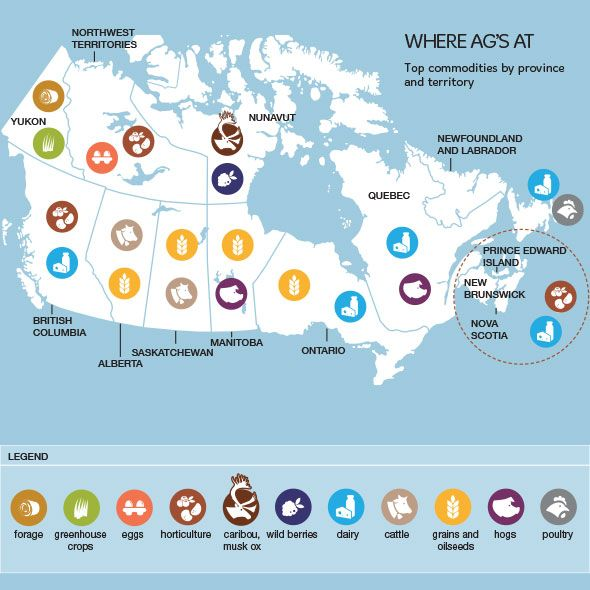 Top agricultural commodities by Canadian province and territory.