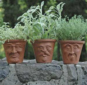 """These terra cotta planters come with faces on the front. Once you've got your shrubs growing, the greenery will look like hair sprouting atop the pot's """"head.""""    http://www.luxuryhousingtrends.com/archive/2009/03/terra-cotta-face-pots-add-personality-to-the-garden/#"""