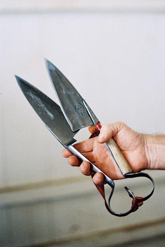 fish scissors