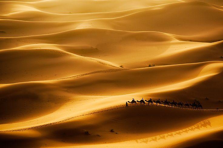 Neues Jahr 2016 in Marokkos Wüste. Genießen Sie ein spezielles Silvester in Marokko und verbringen Sie die letzte Nacht des Jahres in einem luxuriösen Wüstenlager um Camp-Feuer, zum Rhythmus von Trommeln, Wüsten-Musik und der Himmel bedeckt mit Millionen von Sternen.