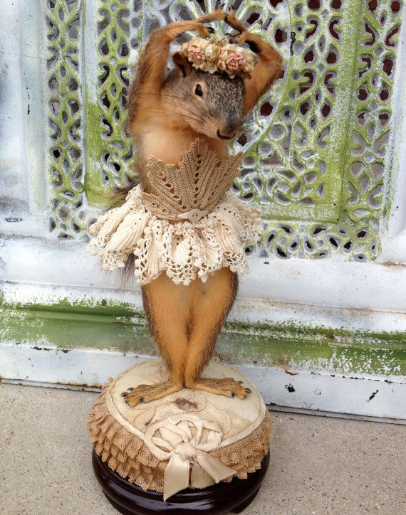 Miss Ellie The Taxidermy Squirrel She Didn't by OnceAgainLoved, $850.99....more like....Miss Emily....bahahaha