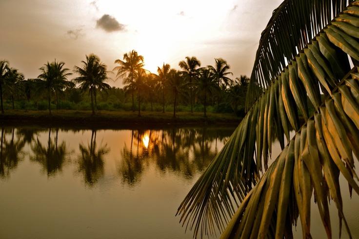Goa, India (For more travel photography visit: www.danielbaylis.ca)