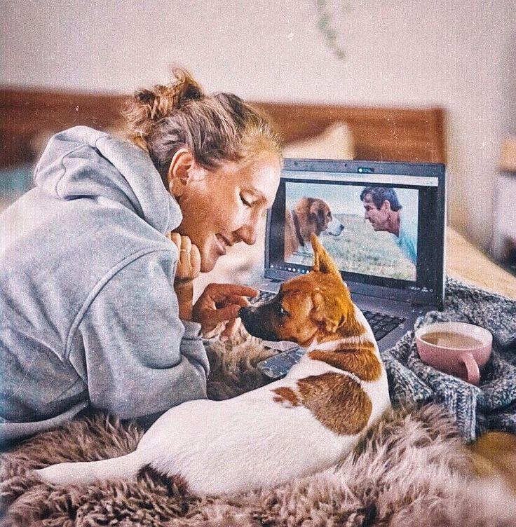 джек рассел терьер щенок jack russell terrier puppies art арт funny jrt дрт щенки