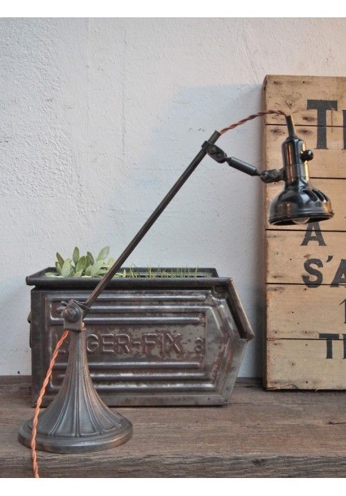 Succulents and grass in vintage industrial.