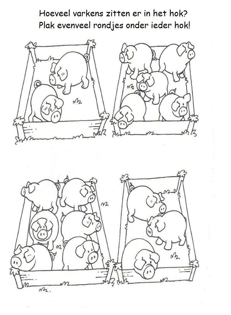 * Hoeveel varkens zitten er in  het hok?