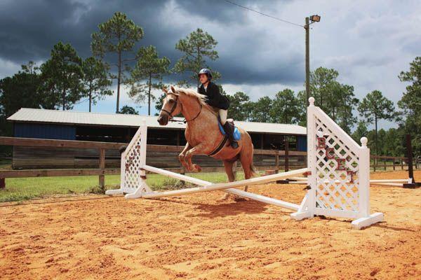 Interscholastic Equestrian Association: Bay County Team