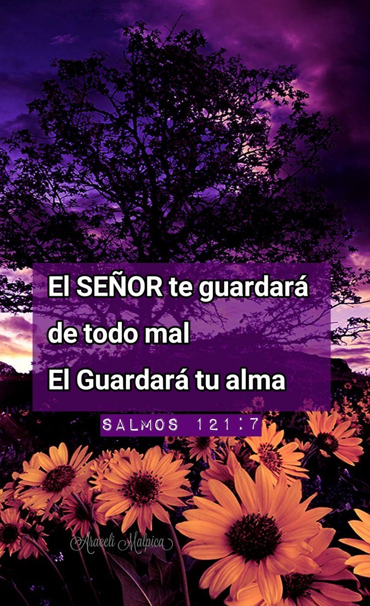 Salmos, 121:7 - El SEÑOR te guardará de todo mal; el guardará tu alma.