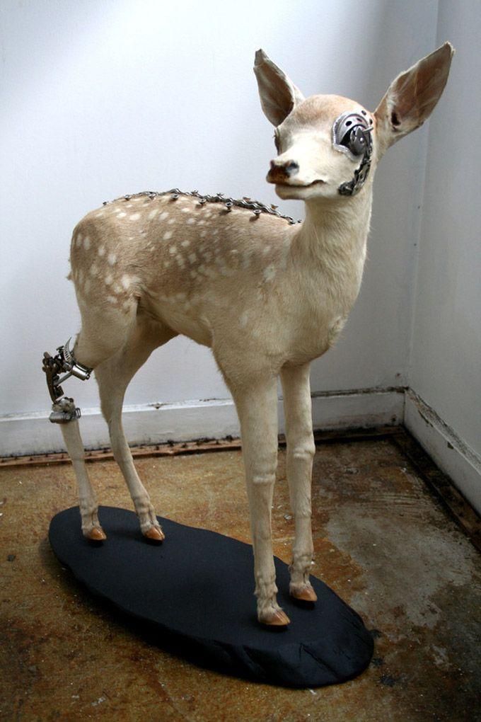 Lisa Black, escultora neozelandesa, cria obras que interligam o natural ao mecânico. Inspirada no movimento Steampunk (subgênero da ficção científica) e na Taxidermia (montagem e produção de animai…