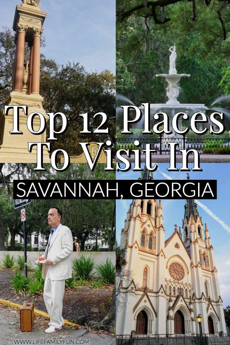 Savannah Georgia Travel Guide Savannah Chat Savannah Georgia Travel Savannah Georgia Vacation