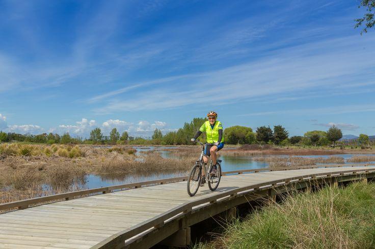 Wheelie Fantastic Cycle Tours | Tasman Great Taste Trail