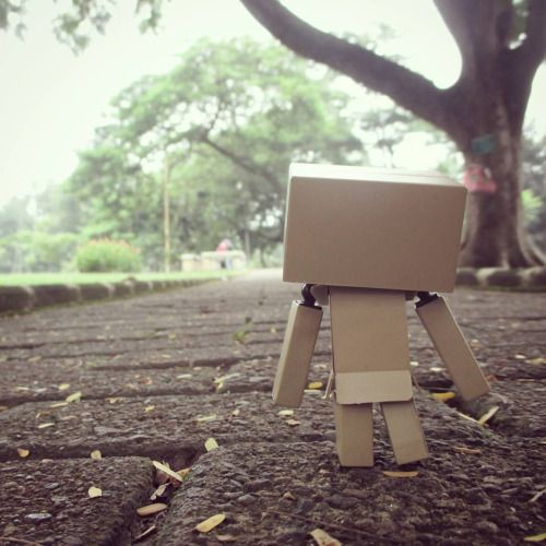 """Oh no How can I walk this rocky road? and never regret I'll never know"" . ""I just have to go"" — Nothing helps (OOR) . #danbo #danboard #toygraphy #yotsubato! #oor #nothinghelps #rockyroad"