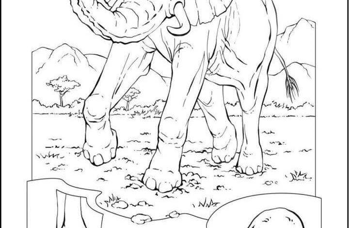 صور حيوانات للتلوين Art Animals Humanoid Sketch