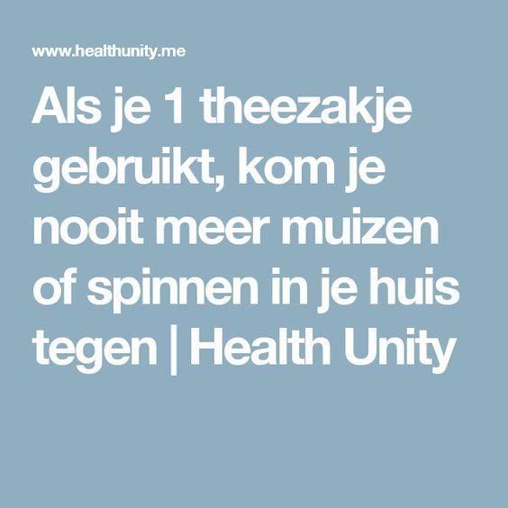 Als je 1 theezakje gebruikt, kom je nooit meer muizen of spinnen in je huis tegen | Health Unity