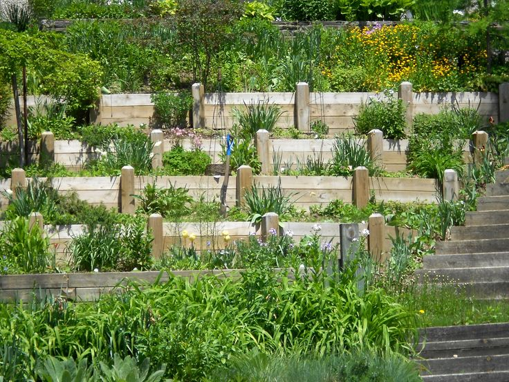 20 best images about tiered gardens on pinterest for How to landscape a garden