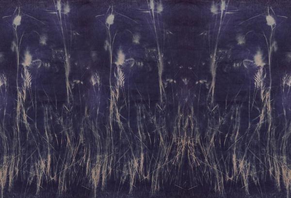 Botanical Blueprint Large Throw Taupe 150x300cm