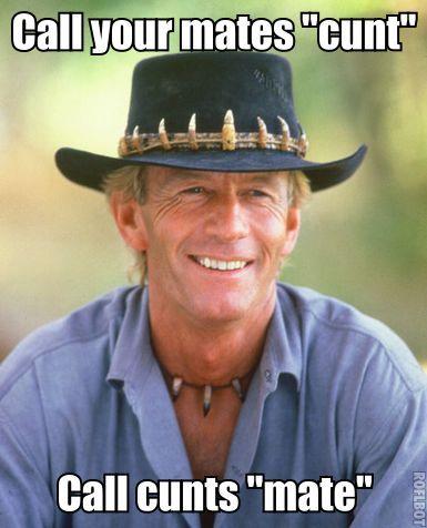 31647d8d4b42c60f4b98ea99a31f6ee9 australia meme funny memes 218 best aussie aussie aussie images on pinterest aussie memes, ha