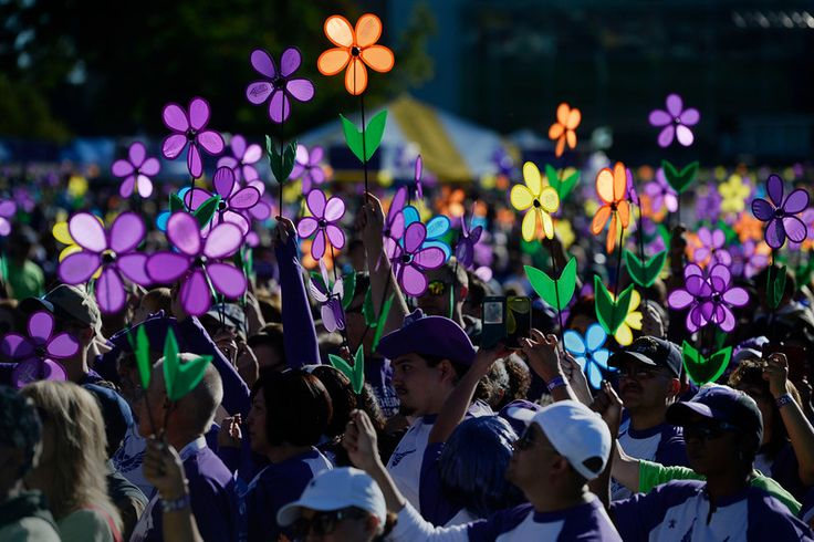 Over The Garden Walk: 17 Best Images About Walk To End Alzheimer's On Pinterest