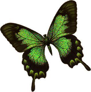 Mariposas Siderales