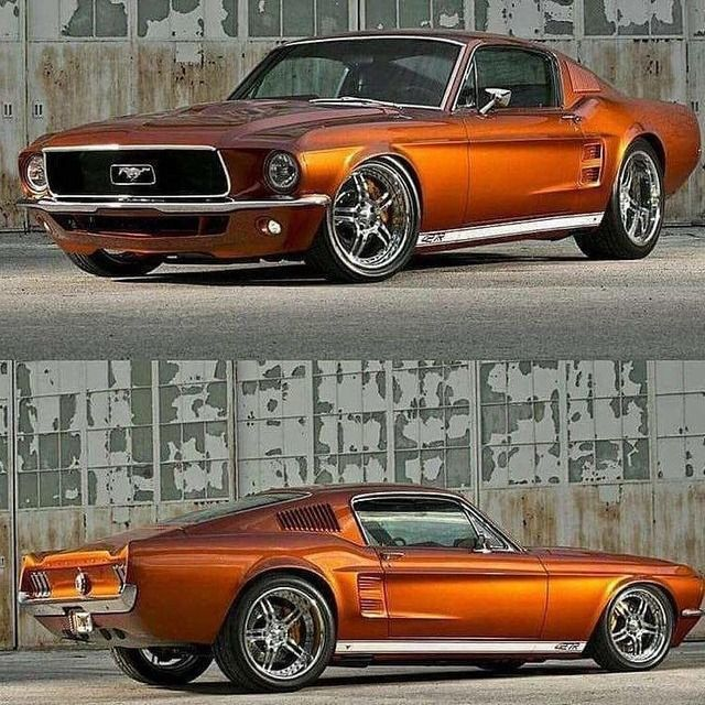 1137 Best FORD MUSTANG Images On Pinterest