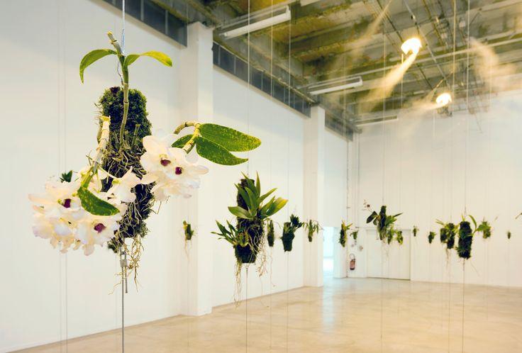 Henrik Hakansson- Galleria Franco Noero