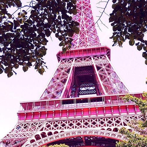 14 Best Images About Pink Eiffel On Pinterest