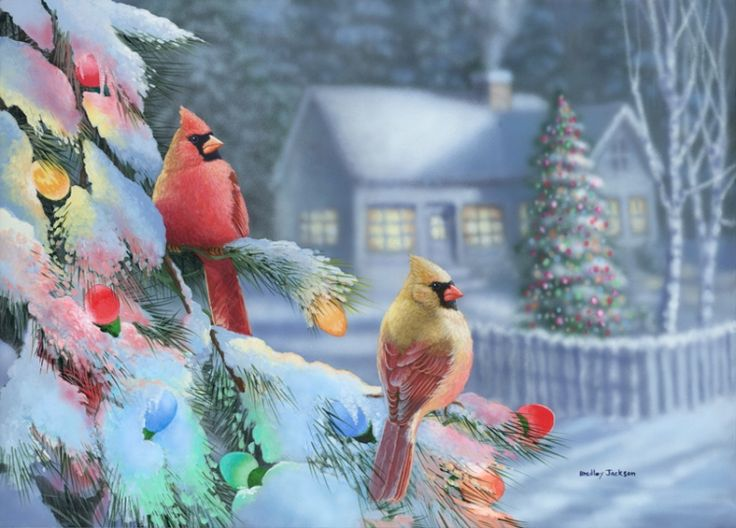 "Wildlife Experience "" Winter Lights "" - Cardinals - Original Painting by Bradley Jackson:"