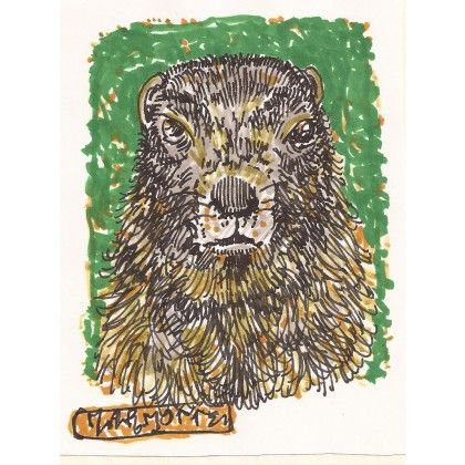 La marmotte #animal