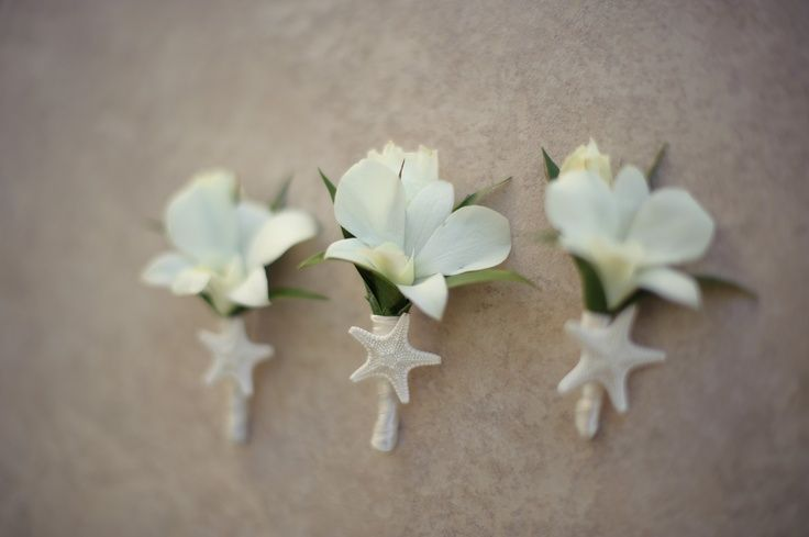 boutonnier starfish | Orchid and Starfish Boutonniere | Wedding Ideas