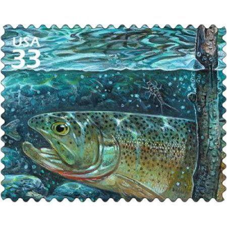 Cutthroat Trout Canvas Art - US Postal Service (24 x 30)