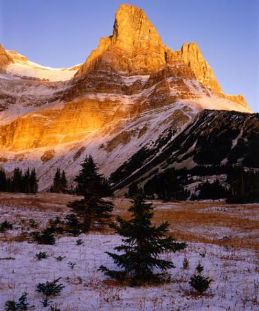 Monarch Mountain in golden light, Canadian Rockies, Canada. www.twitter.com/wildcasalmon