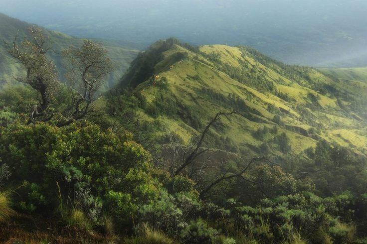r i n j a n i m o u n t a i n Lombok - Indonesia