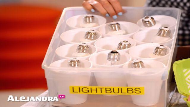 light bulb storage ideas - Google Search | Garage ...