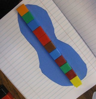 18-measurement-lesson comparing foot sizes and measuring with non standard measure