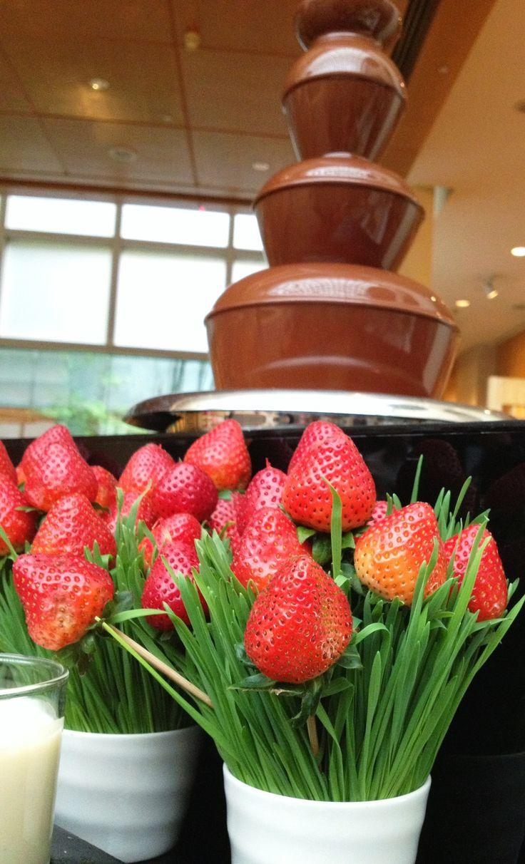 Top 25+ best Chocolate fountain bar ideas on Pinterest | Chocolate ...