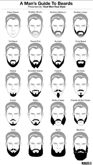 Man's Guide To 16 Beards – Beard Style Infographic For Men