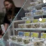 California's Cannabis Crowd Isn't Afraid of the Big Bad Attorney General