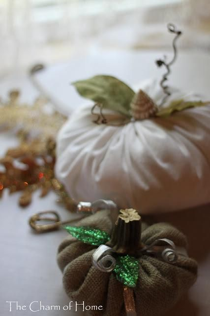 DIY Pumkin Crafts : DIY Magical Pumpkins