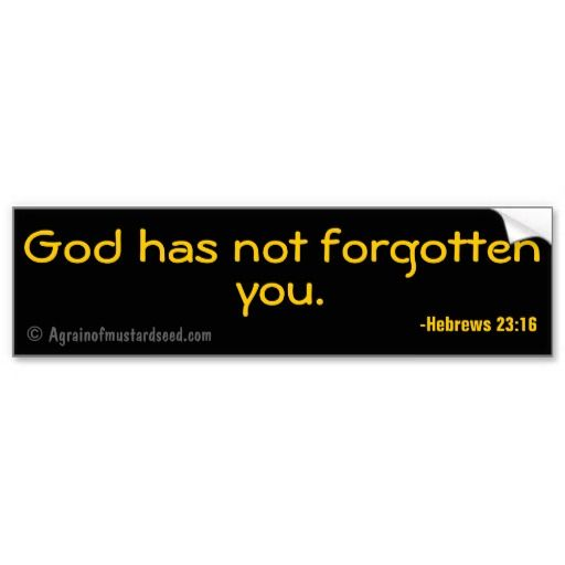 God has not forgotten you christian quotes bumper stickers agrainofmustardseed itsachristianthing