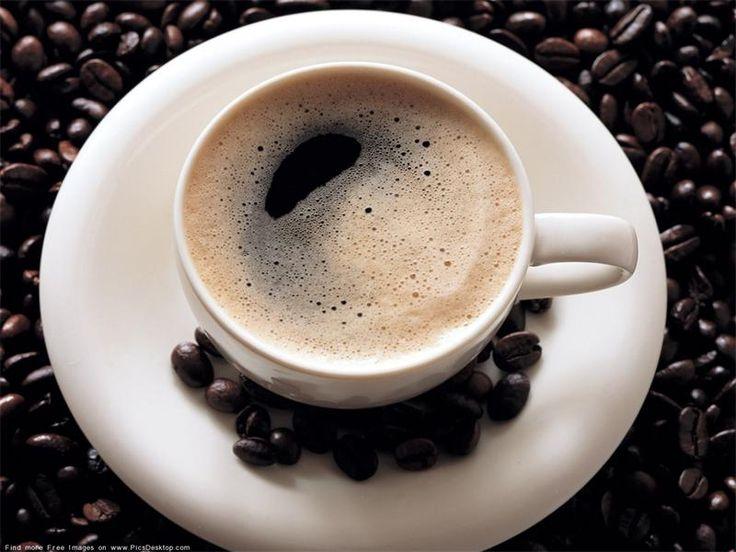 Кофе- Coffea Кофе – второй после нефти продукт в мире по уровням продаж. Основными странами-производителями этого бодрящего ароматного напитка являются Южная и Центральная Америка, ...