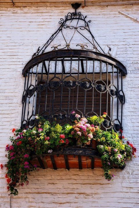 Gorgeous ironwork and flowers over the window!