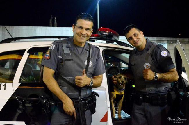 """""""O GRITO DO BICHO"""": Petição pública pede volta de sargento da PM para ..."""