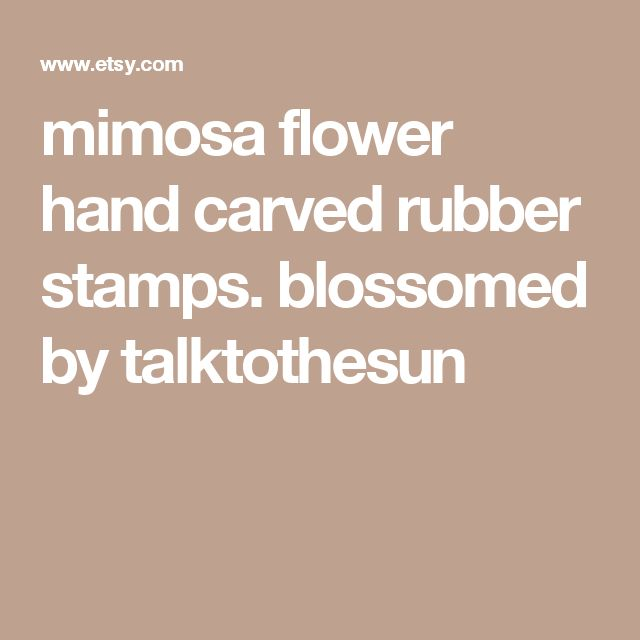 mimosa flower hand carved rubber stamps. blossomed by talktothesun