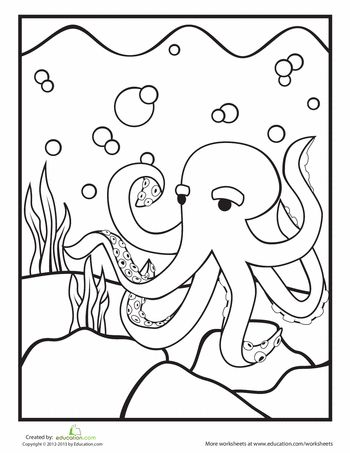 Octopus Coloring Sheet Worksheets