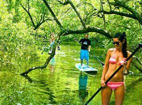 Paddle boarding through the Tunnel of Trees. 27 things to do in Byron Bay.