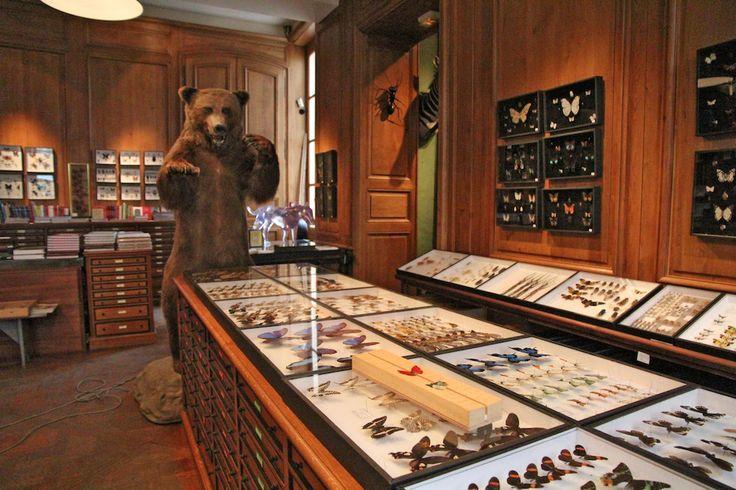 パリ老舗標本屋Deyrolle(デロール)のストーリー:180年以上の歴史を持つ、美しい「驚異の部屋」。|Life, style, love and travel|ファッション、コレクション最新情報|VOGUE