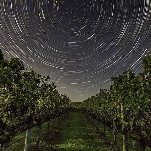 This is a WOW photo! Repost @macattack1986 #greatthingsgrowhere ✨✨✨✨✨✨✨✨✨✨✨✨  ・・・  Great night for Star trails, finally managed to get a clear weekend night at @craggyrange Gimblett gravels. 132 photos over 1 hour, 30 second exposures.  f2.0, iso 640